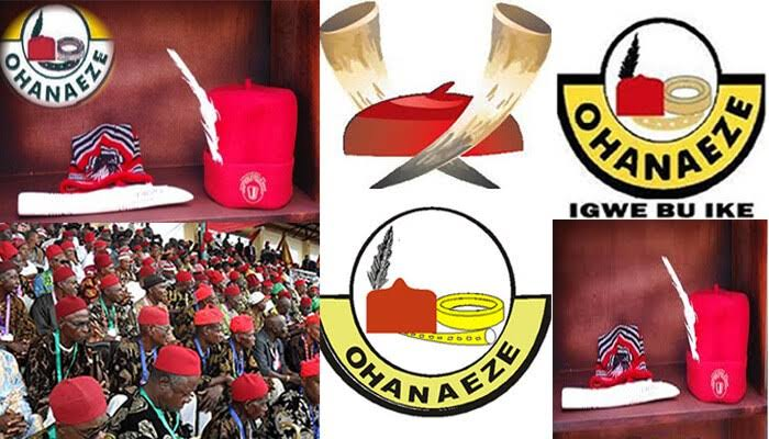 Ohanaeze Constitutes 40-Man Electoral Committee