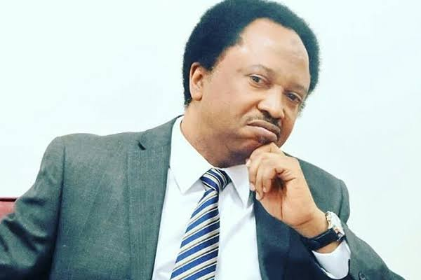 Why Is Social Media Your Problem – Shehu Sani Questions Northern State Governors And Leaders