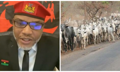 The Hausas Are Good People, The Problem Of Nigeria Are The Fulanis – Nnamdi Kanu Says