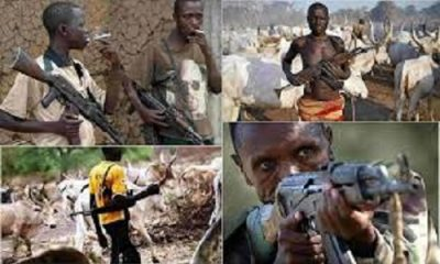 Heartless Fulani Herdsmen Raping An Innocent Woman One After The Other (Video)